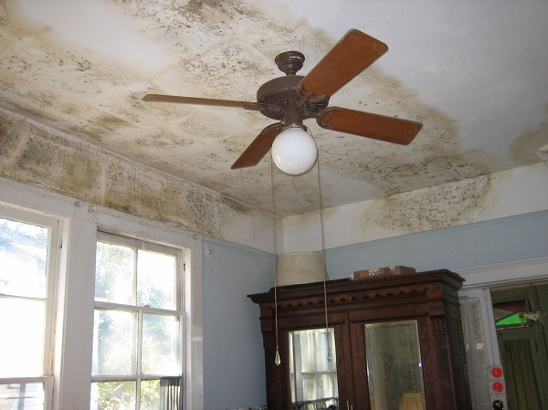 how to repair water damaged ceiling paint, water damaged ceiling repair cost, water damaged ceiling mold, water damaged ceiling what should i do, plaster ceiling repair tips, how to fix a leaking ceiling in an apartment, ceiling hole repair, ceiling repair contractors,